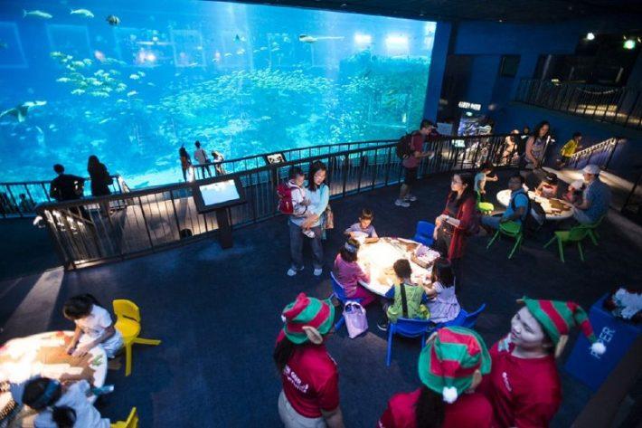 9091145_sea-aquarium-merry-fishmas-learn_t958f5119